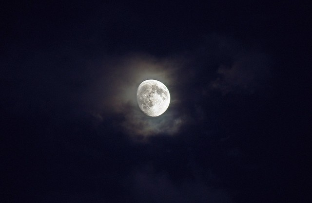 Mr Moon #2