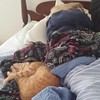 .@TracyLeeKelly keeps Victoria warm while she sleeps.