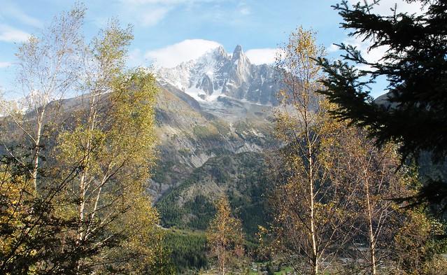 mont berro alps massif chamonix through forest