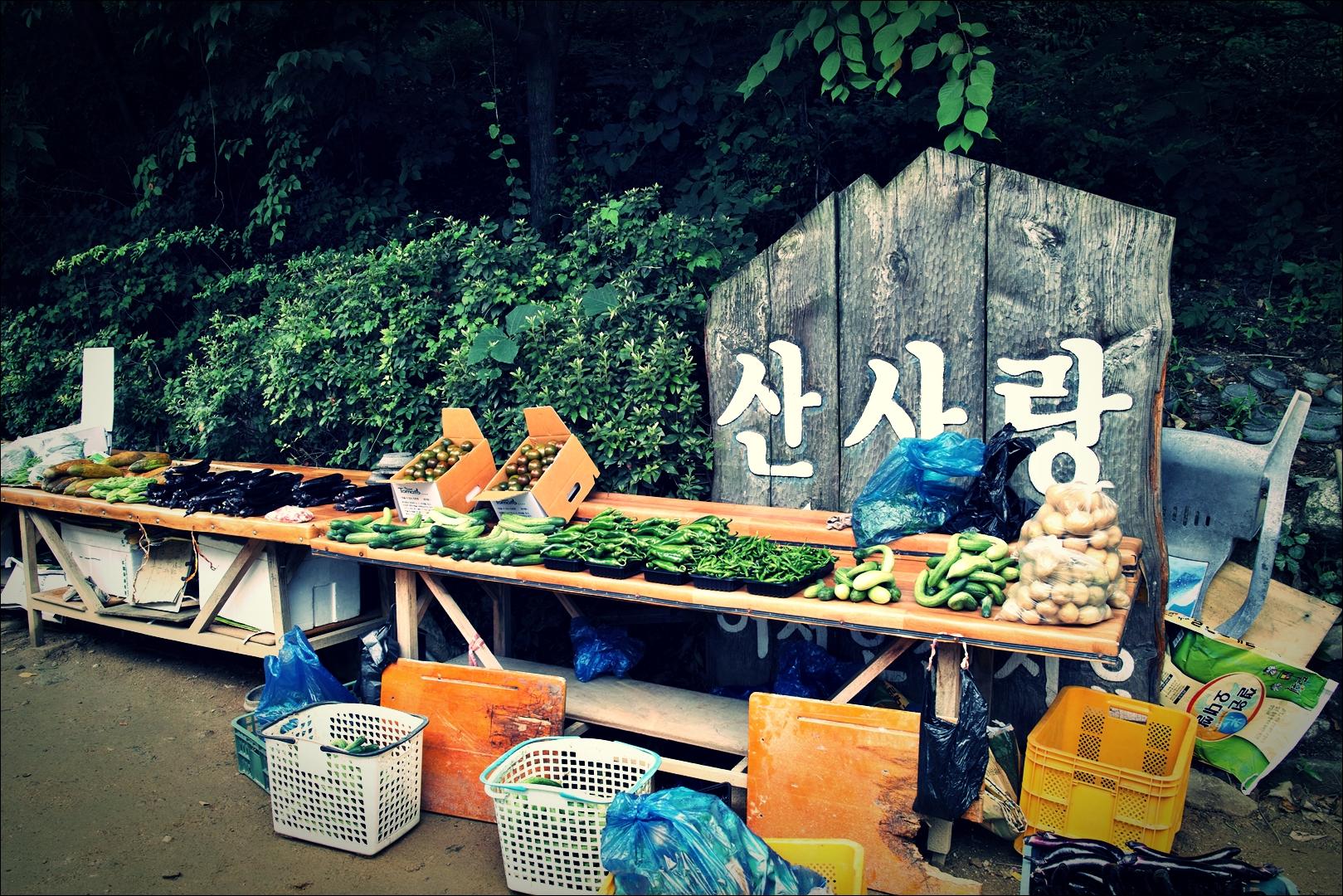 채소-'용인 산사랑 한정식'