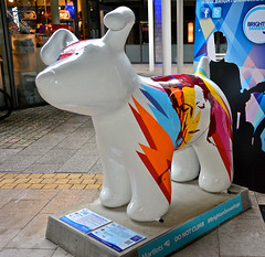 Brighton, Snow Dogs, Bow Wow By Mike Edwards