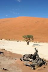 DSC02864 - Namibia 2010 Sossusvlei - Kopie
