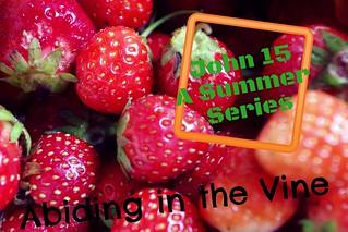 Abiding in the Vine: Series