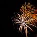Alachua Fireworks 3