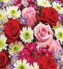 1800flowers coupon 10% off Florist Choice Bouquet by kristiecbg