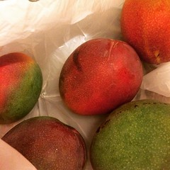 and thanks for the mangoes, D! #mango #hawaii
