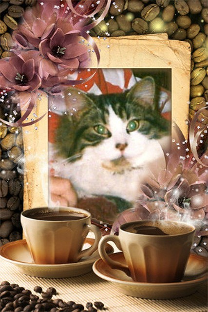Sweet Mitzi Framed Behind Two Cups Of Coffee