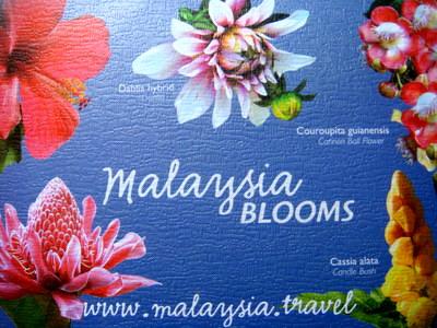 Malaysia Blooms, Sony DSC-T100