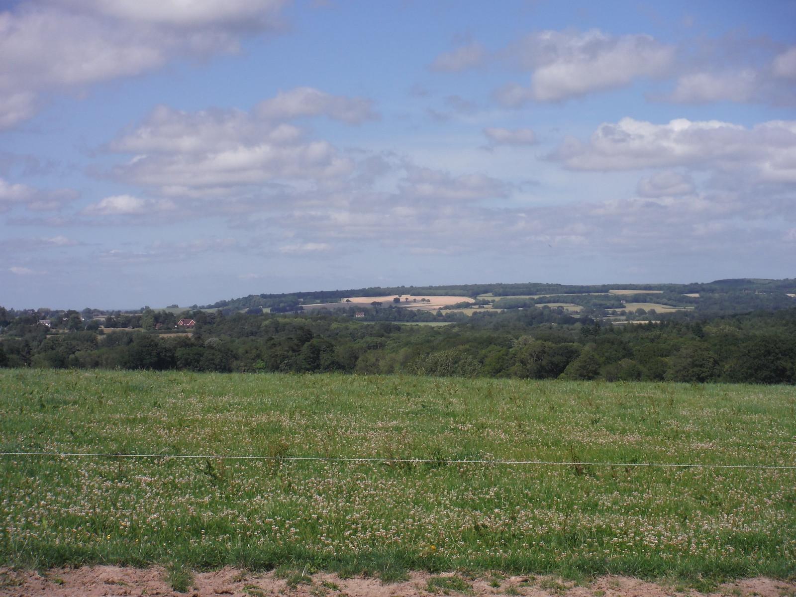 Views NE from Barlavington SWC Walk 217 Midhurst Way: Arundel to Midhurst