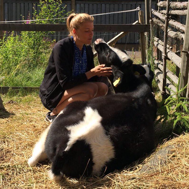 På 4H-gården serverar de bland annat veganska biskvier och morotskaka. Uppskattas enormt av oss som hellre pussas med djur!