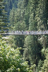 日, 2015-07-19 16:24 - Capilano Suspension Bridge Park