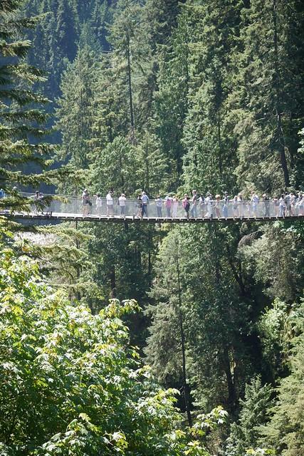 日, 2015-07-19 16:24 - Capilano Suspension Bridge Park