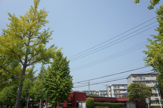 2015年8月1日の空-01