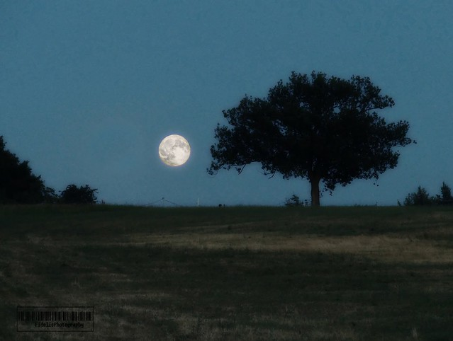 Moon rise in Zocca