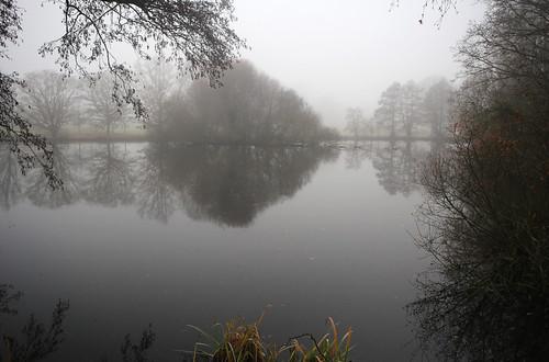 Loseley Park mist
