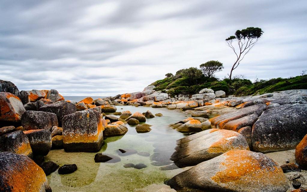 Tasmania 2016-280