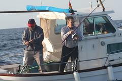 Trofeo de pesca Roquer balizado 2016
