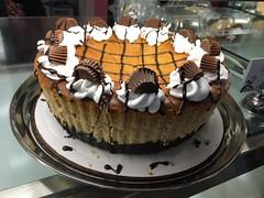 Everything Cheesecake