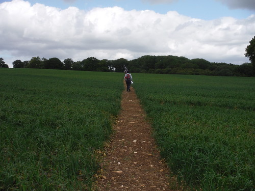 a usually well-cleared path across large field