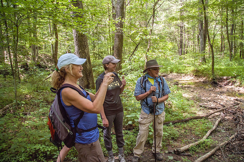 Sierra Club Ecotour - Hoosier National Forest - Charles C. Deam Wilderness Area - June 28, 2015