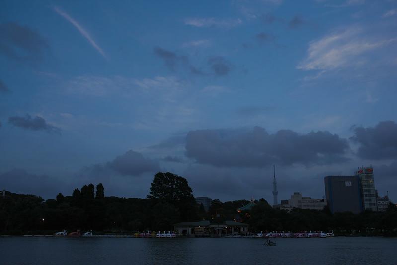 東京路地裏散歩 不忍池 2015年7月15日