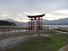 water, body of water, vacation, shore, torii,