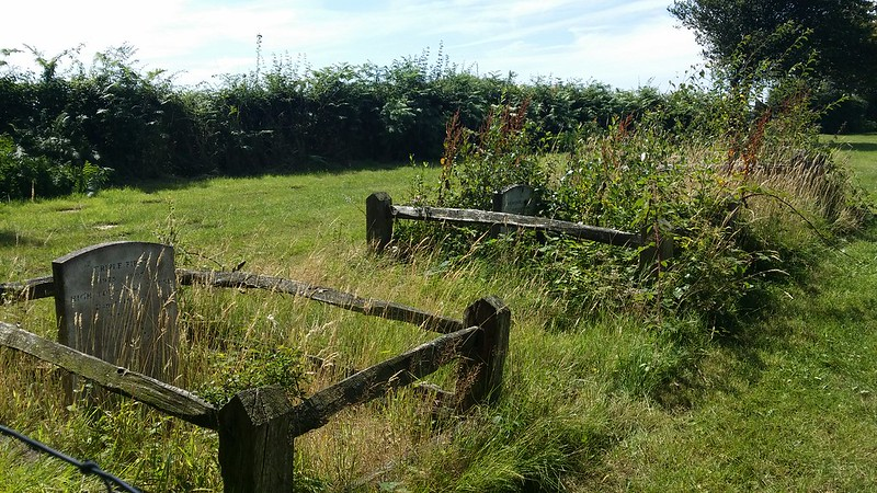 Horse cemetery #Wealdway #sh