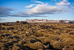 Iceland (27)