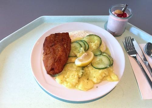Baked coalfish with remoulade & potato-cucumber-salad / Gebackener Seelachs mit Remoulade & Kartoffel-Gurkensalat