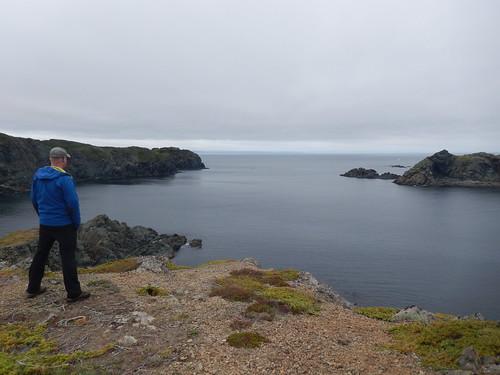 Crow Head - hike - walvis gespot