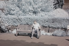 Old Amersham in Infrared