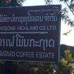 Fri, 01/20/2017 - 08:15 - One of many coffee plantations