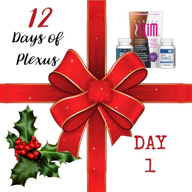 Day1Plexus