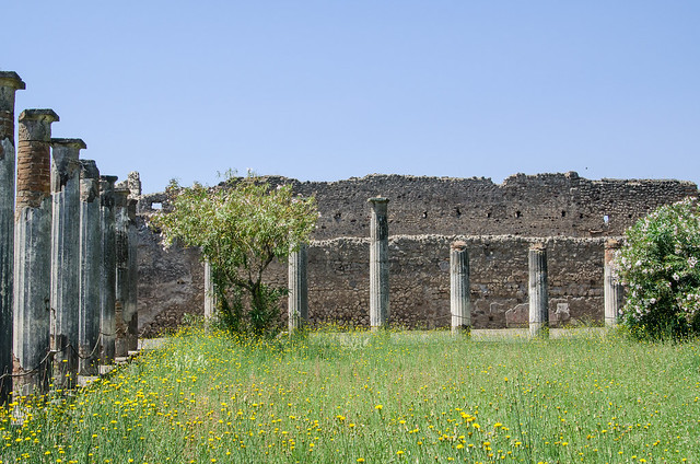 20150519-Pompeii-House-of-the-Faun-0446