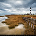 Outer Banks North Carolina Bodie Island Lighthouse Landscape NC by Dave Allen Photography