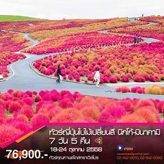 #ทัวร์ญี่ปุ่นใบไม้เปลี่ยนสี (#ตามรอยใบไม้แดง) 2558 #โตเกียว #นิกโก้ #มินากามิ : ชมความงามของใบไม้เปลี่ยนสี ณ #เมืองมรดกโลกนิกโก้ สวนสวยโชโยเอ็น ศาลเจ้าโทโชกุ น้ำตกเคงอน สะพานชินเคียว ทะเลสาบชูเซ็นจิ น้ำตกริวซุ | เที่ยวเมืองมินาคามิ ชมความงามของใบไม้เปลี่ย