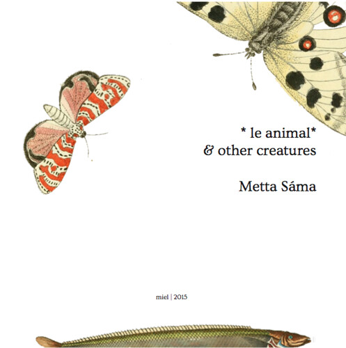 LE ANIMAL & OTHER CREATURES by Metta Sáma