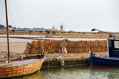 Salt pans and windmills
