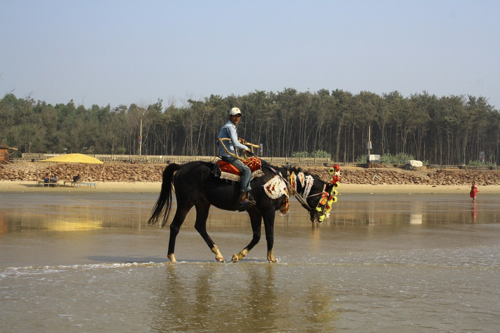 Horse Ride at Digha Sea Beach - West Bengal, India
