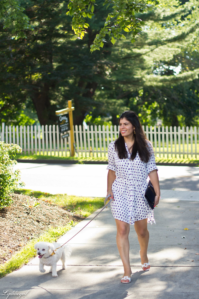 polka dot shirt dress, clare v clutch, dog walking outfit-1.jpg