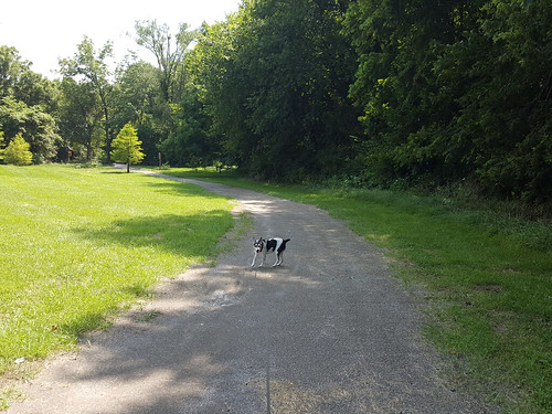 2015-08-03 - Walking Peedee & Rennie - 0006 [flickr]