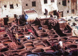 Fez, Tanneries, Morocco