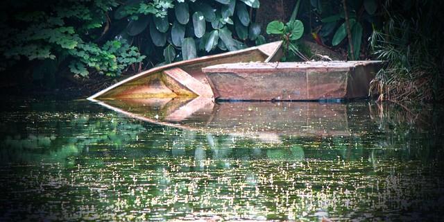 Arte natural. Jardín Botánico Joaquín Antonio Uribe. Medellín, Colombia. Colombia.