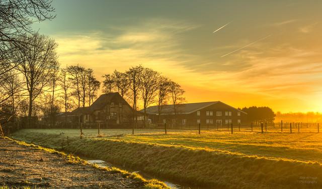 A Dutch farm waking up.