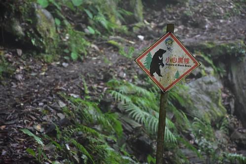 瓦拉米步道-小心黑熊