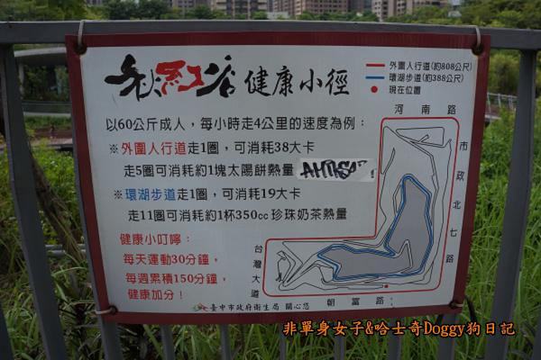 台中秋紅谷23