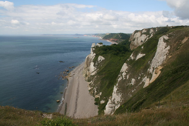 View from Beer Head