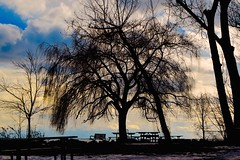 BLUFFER'S PARK TODAY...DECEMBER 30, 2016, ACA PHOTO