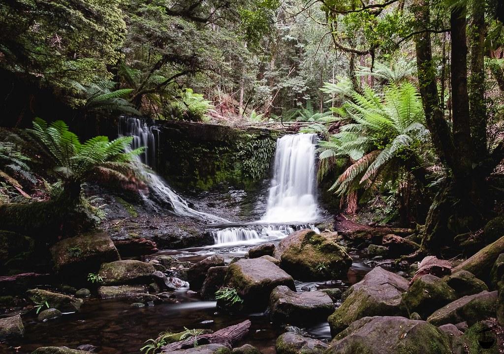 Tasmania 2016-116