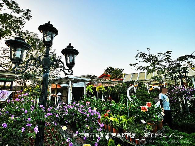 田尾 窄巷古厝咖啡 芳香玫瑰園 10